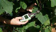 Reportage au Mas numérique, laboratoire vivant de la viticulture 4.0 situé dans l'Hérault, à l'occasion des Rencontres économiques et sociétales d'Occitanie (RESO) sur le futur de l'emploi à l'heure de […]