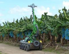 Projet terminé  Contact ITAP :Marc Rombaut– Coordinateur : Dominique Didelot Financement :DGAAL, UGPBAN Résultats : Publications : «OPTIBAN, des solutions innovantes pour le traitement des bananiers» – Sciences Eaux […]